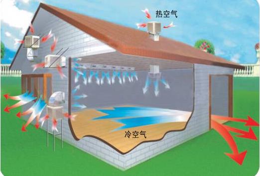 厂房降温模拟图
